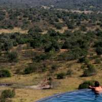 Mihingo Lodge> Lake Mburo National Park