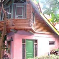 Forest Cottages Kampala Uganda