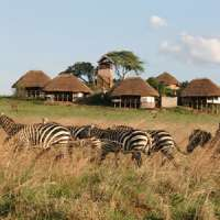 apoka safari lodge kidepo n.p uganda
