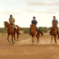 BiillsPort Guest Farm vacation packages