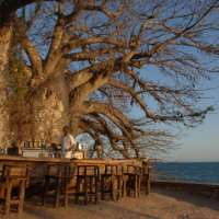 Selous Wilderness Camp & Zanzibar holiday package>9 nights