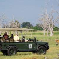 Okavango Delta Safari (3 Lodges, 6 nights)botswana