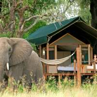 best of botswana safari>8days sanctuary retreats