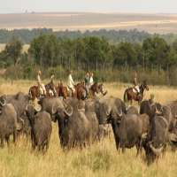 kenya self drive safari>offbeat kenya safari>7days