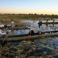 HAJV Okavango & Chobe Trail North, 8 Days > Accommodated Holiday