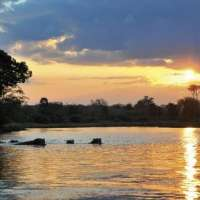 Tanzania grand southern safari>selous safari Tanzania>10nights