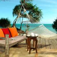 Jozani forest tour>Stone Town Holiday Zanzibar>7days