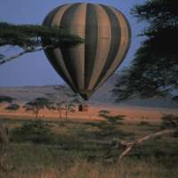 kenya safaris> kenya big5 holidays>10days>kenya vacation packages