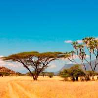 12days>holidays in kenya>safaris kenya>vacation holiday packages kenya
