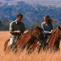 Wildside Safari Camp>Entabeni South Africa