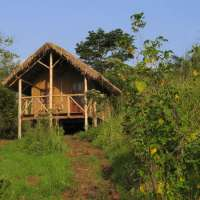 Chimps' Nest Lodge, Kibale National Park